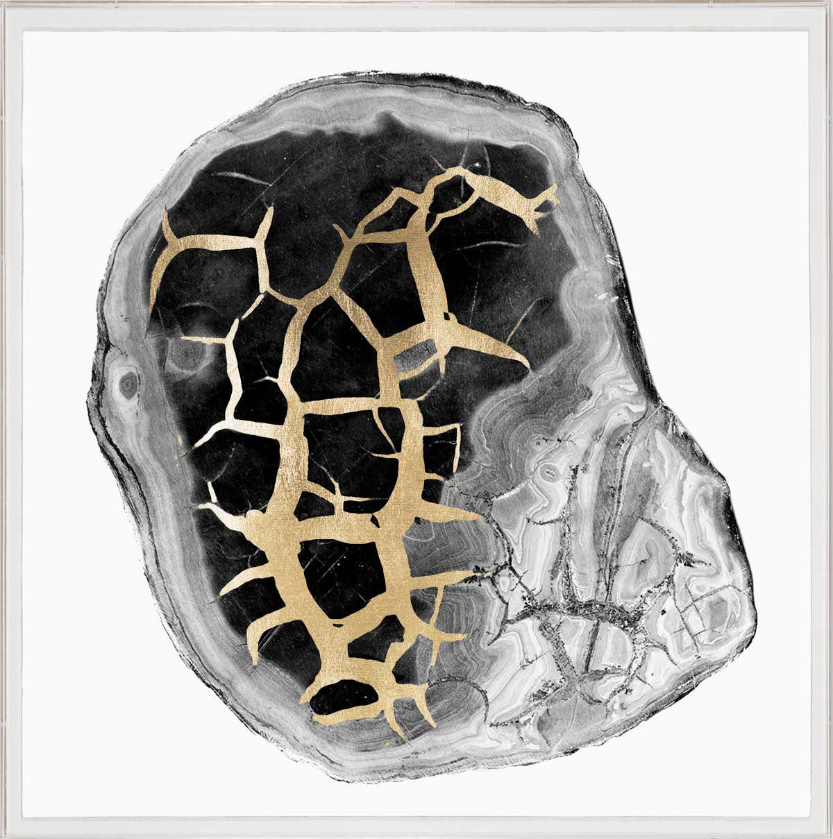 Natural Curiosities Black and White Geode 2 Artwork