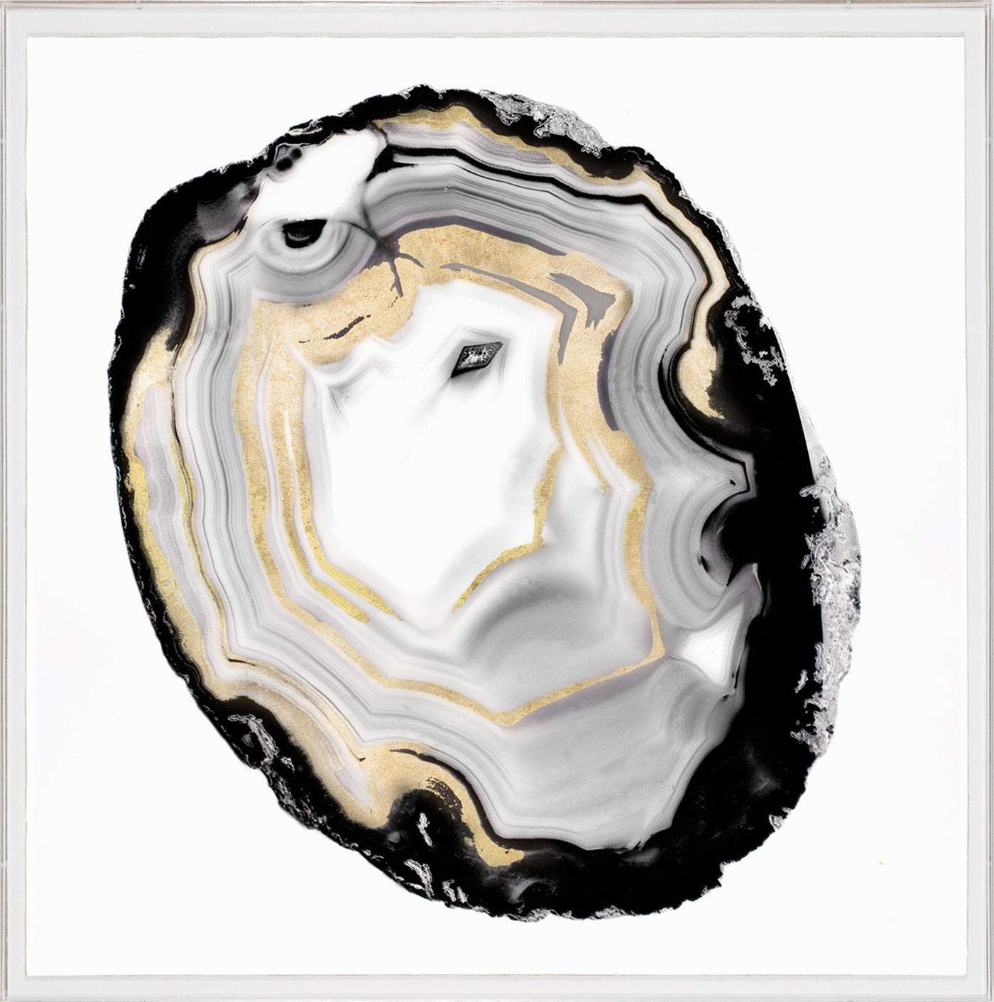 Natural Curiosities Black and White Geode 3 Artwork black gold acrylic box