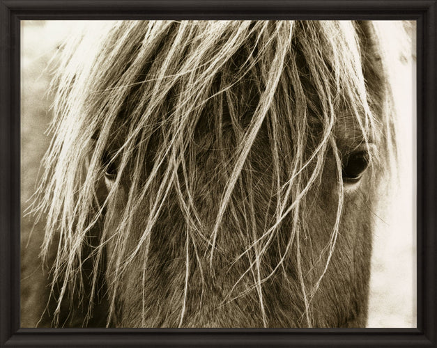 Natural Curiosities Hyden Horses Blonde Wall Art front view