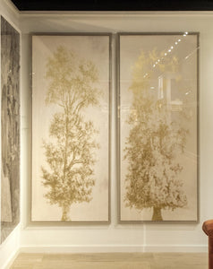 natural curiosities strutt trees artwork showroom