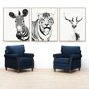 Natural Curiosities Tylinek Artwork Room View zebra deer tiger