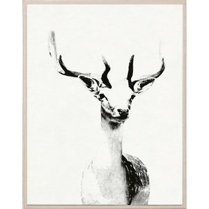 Natural Curiosities Tylinek Deer Artwork