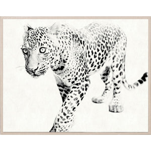 Natural Curiosities Tylinek Leopard Artwork