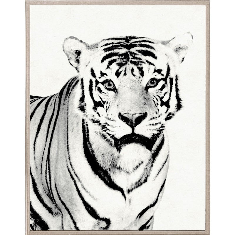 Natural Curiosities Tylinek Tiger Artwork