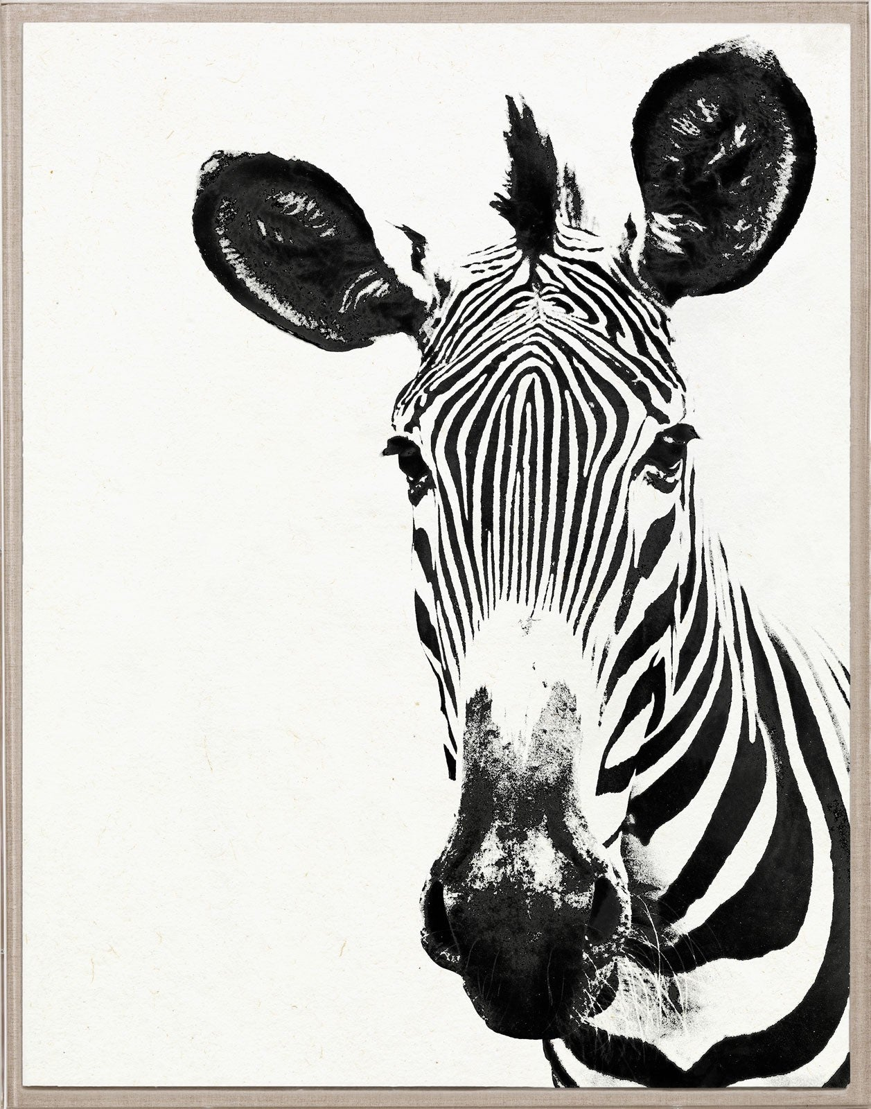 Natural Curiosities Tylinek Zebra Artwork