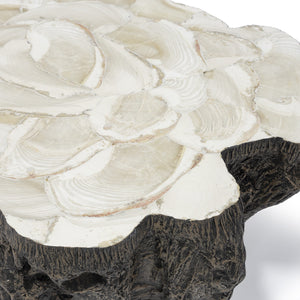 Chloe Fossil Clam Lava Coffee Table detail