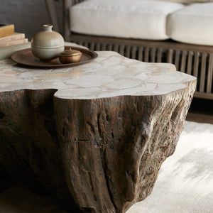 Chloe Fossil Clam Lava Coffee Table styled