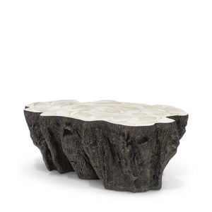 Palecek Chloe Fossil Clam Lava Coffee Table