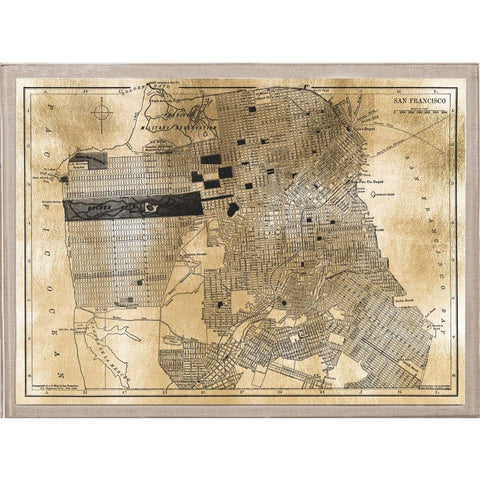 natural curiosities gilded city map san fran