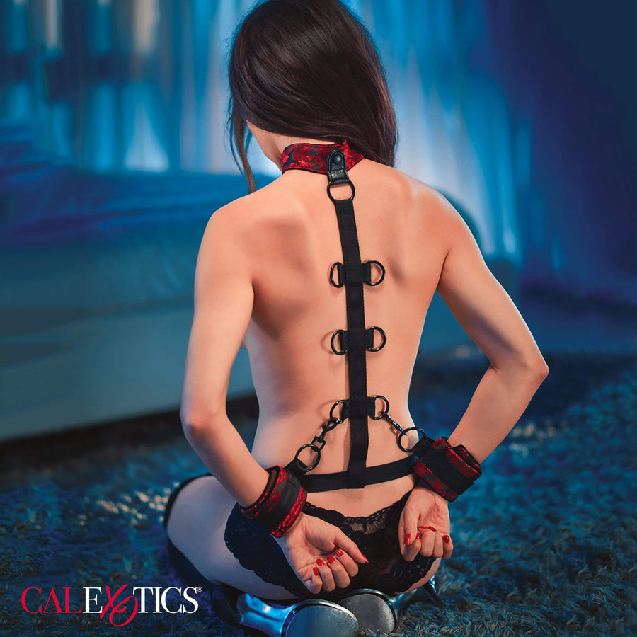 California Exotics - BDSM Scandal Collar Body Restraint (Black)
