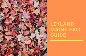 Leyland Maine Fall Guide