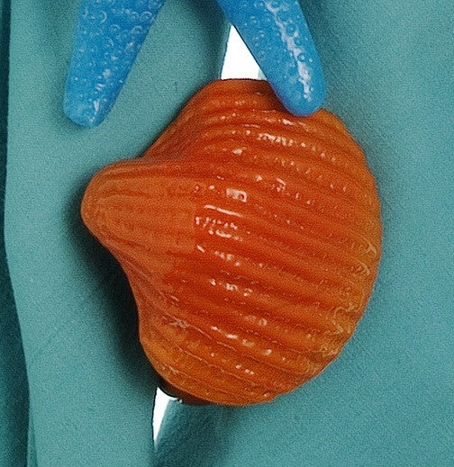 Set of Eight Orange Glass Scallop Shell Napkin Rings