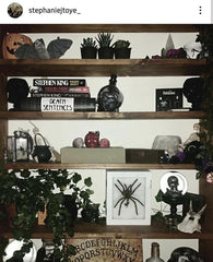 oddities-shelf