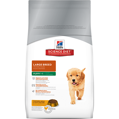 Hill's Science Diet Puppy Large Breed Canine Dry