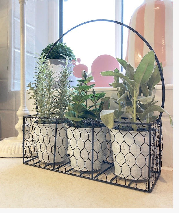 Set of 3 Assorted Herbs in a wire carrier
