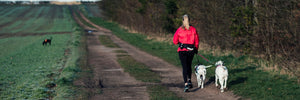 The Average Dog Owner Gets More Exercise Than Gym-Goers