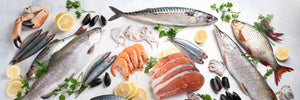 fish and other seafood containing omega 3 on ice