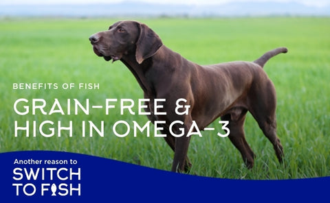 Fish4Dogs Grain Free Dog Food
