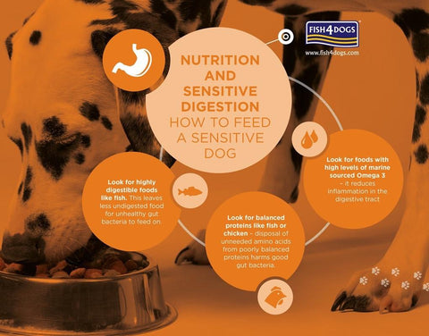 Fish4Dogs Sensitive Digestion in Dogs Infographic