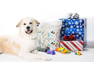 Holiday Dog Toy Collection & Bucket
