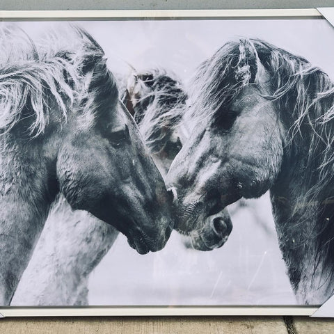 Framed Canvas Horse Kiss
