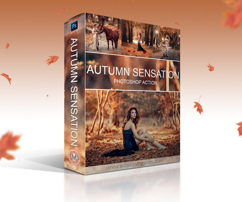 Autumn Sensation