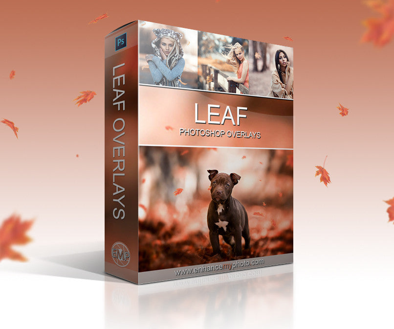 Leaf Overlays