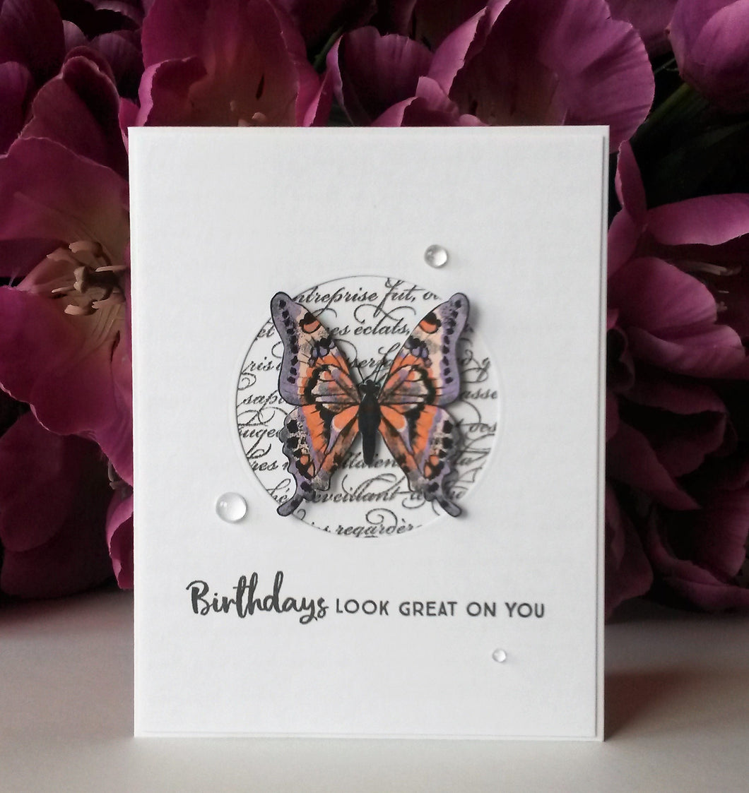 Butterfly - Birthdays - Orange & Purple