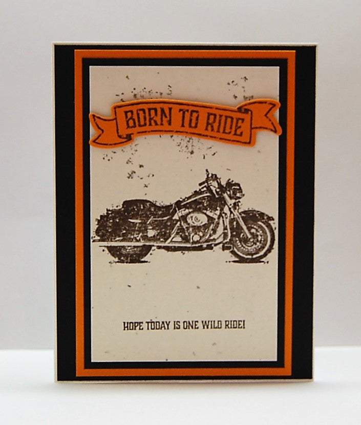 Born To Ride - Wild Ride