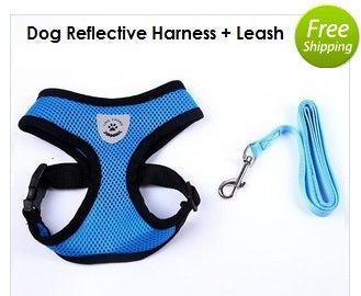 Dog Reflective Harness & Leash