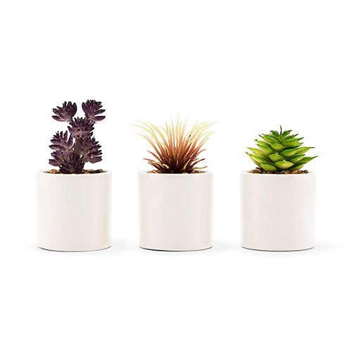 Mini Faux Succulent Plants Set of 6