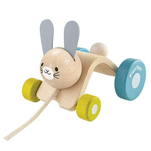 Plan Toys Active Toys Hopping Rabbit Pull Toy 12+ months