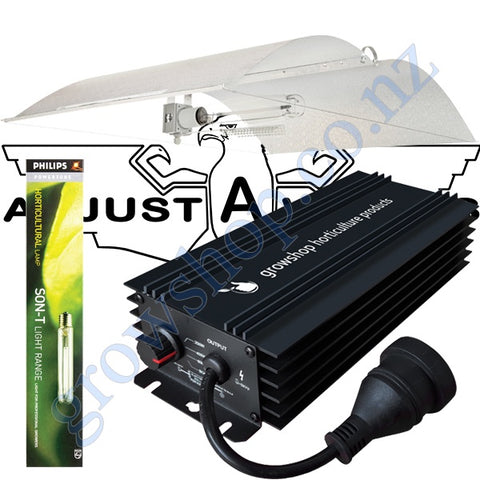 Light Kit 600w GHP Digi Ballast, Son-T Philips HPS Lamp & Large Avenger Adjustawings