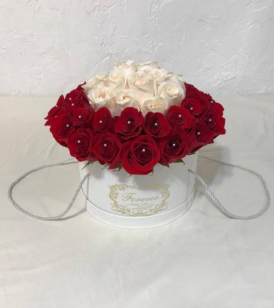 Red and White Roses Tambor