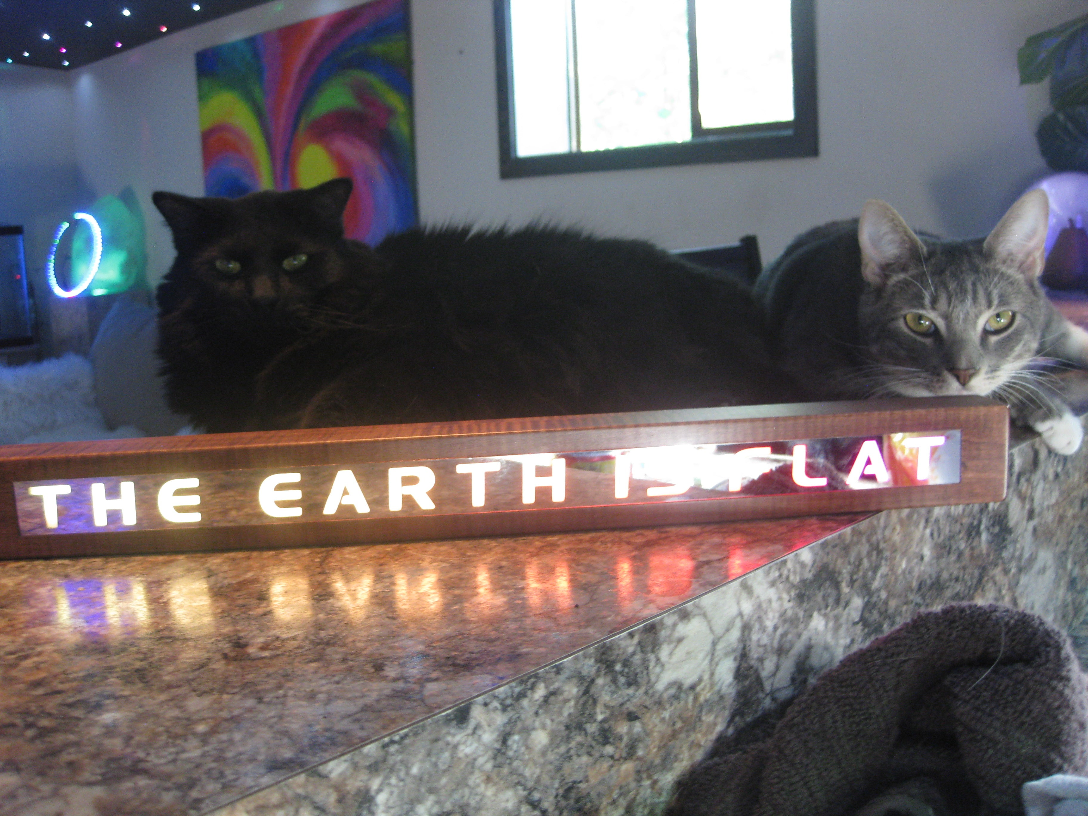 THE EARTH IS FLAT chase light Marquee 3.0