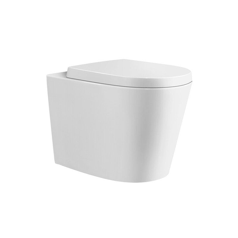 Cessina In wall Toilet Combo Set - Complete