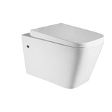 Wall Hung Toilet Suite & In Wall Cistern with frame - Complete B303