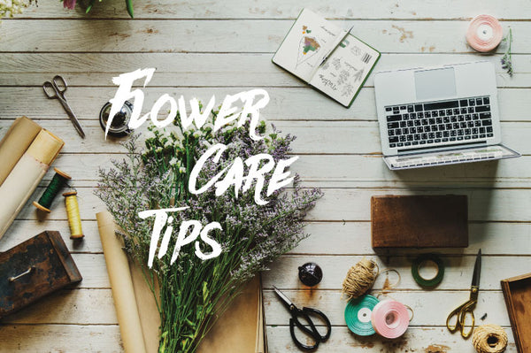 Fresh Flower Care Tips
