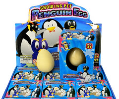 growing penguin egg