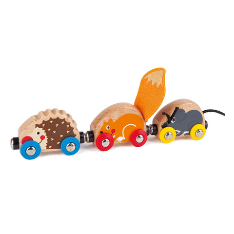 Tactile Animal Train - Hape