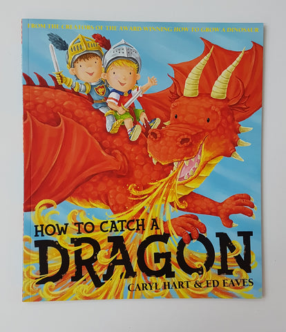 How To Catch a Dragon book