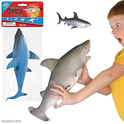 Ginormous Grow Shark toysmith