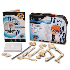 Skeleton Kit & Genetics Investigation