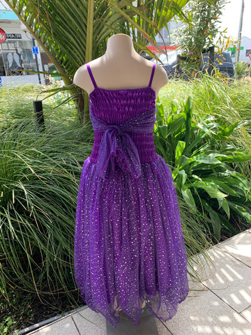 Glitter Dress Purple - Large