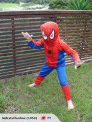 Spiderman Dress up small