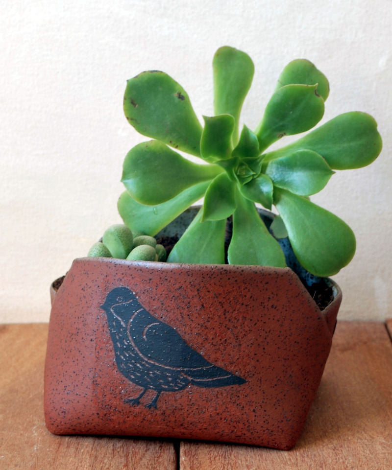 Handmade Indoor Planter Ceramic Succulent Planter - ShellyClayspot