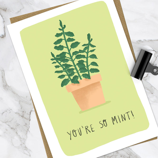 You're So Mint! (Pack Of 6)