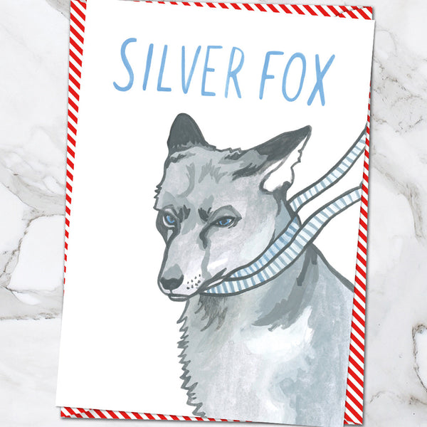 Silver Fox (Pack of 6)