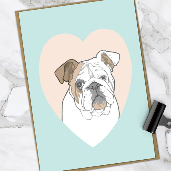 Bulldog (Pack Of 6)