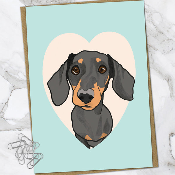 Dachshund (Pack Of 6)
